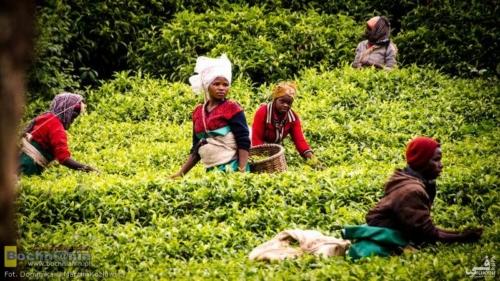 20190222-091854 TransAfrica - Rwanda